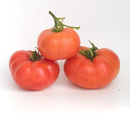 Tanunda Red fruit