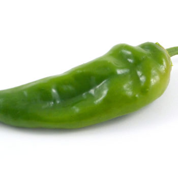 Padron pepper BHS