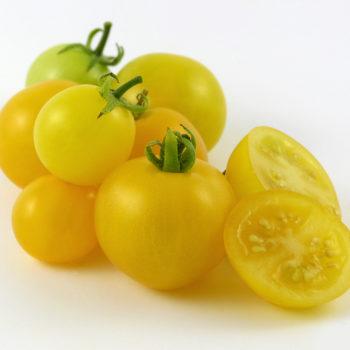 yellow dwarf ripe BHS