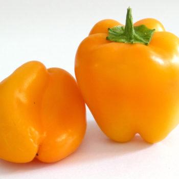 Orange Sun BHS